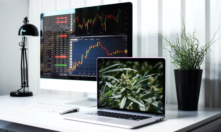 Canadian Cannabis Companies are Still Not Profitable (After 3 Years)