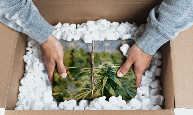 Amazon Is Lobbying the Government to Legalize Cannabis